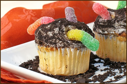 Worms In Dirt Cupcakes - Belly Full