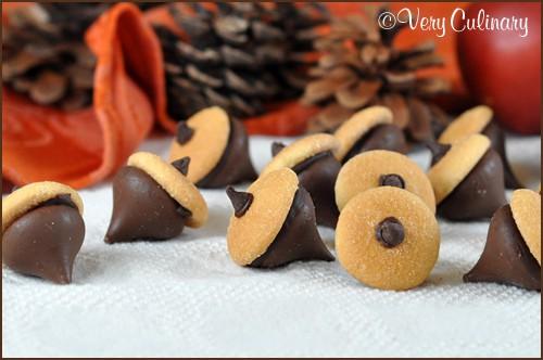 Chocolate_Acorns_blog_