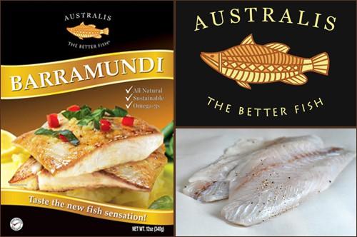 Australis' Barramundi