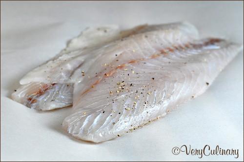 Barramundi, The Better Fish