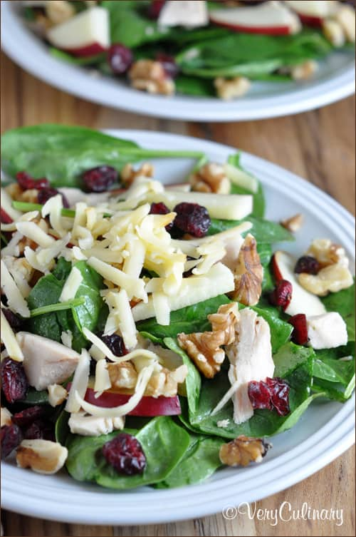 Turkey and Cranberry Salad with Toasted Pecans and Smoked Gouda | Very Culinary