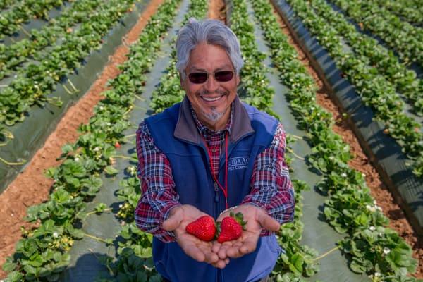 Farmer-blog