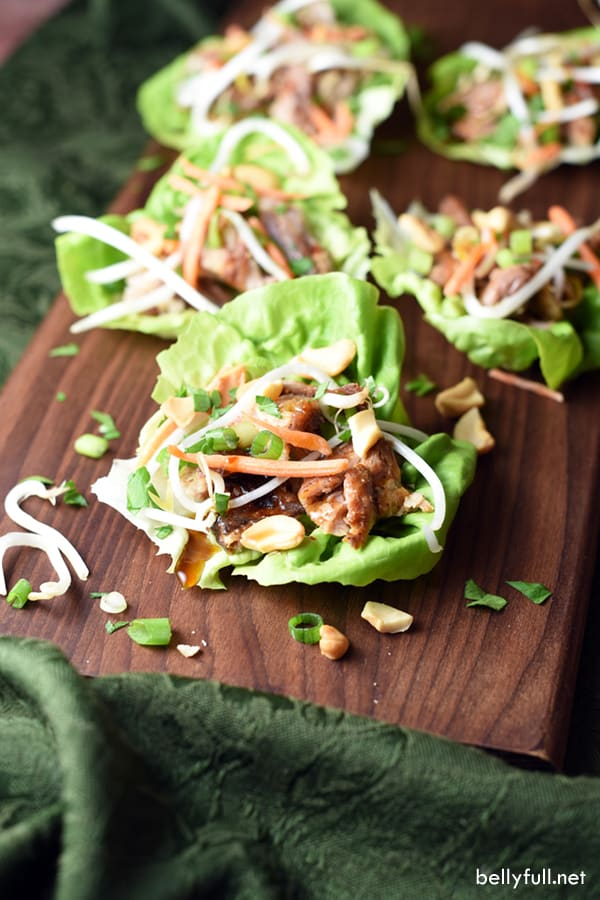 These Pork Lettuce Cups are quick, light, refreshing, filling, and absolutely delicious. Perfect for summer when you don't want to turn on the oven!