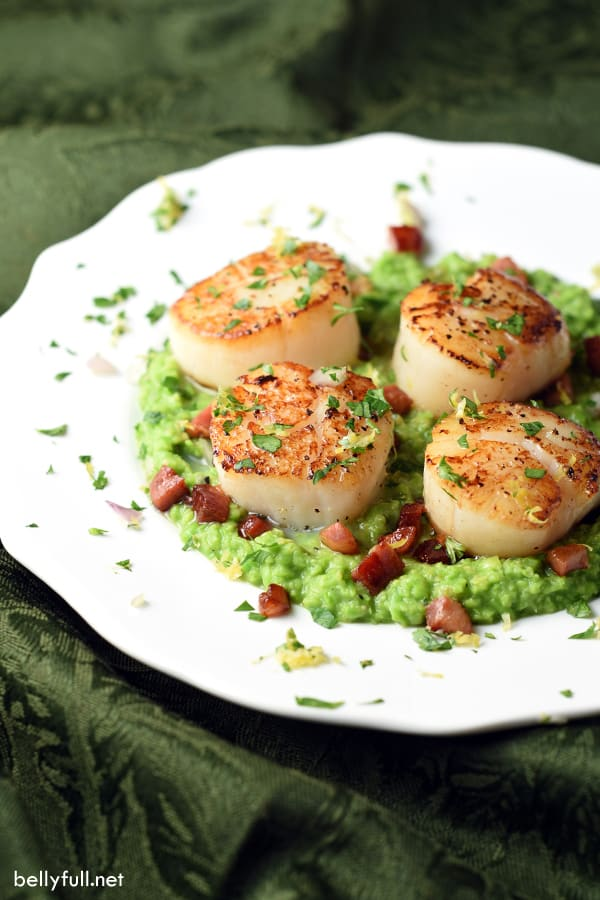 seared scallops with crispy pancetta and pea puree on white plate