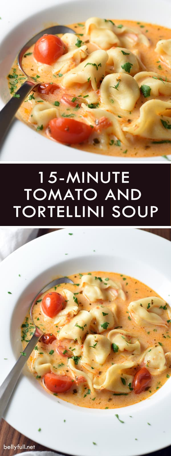 pin for Tomato Tortellini Soup