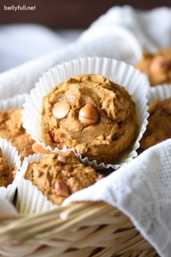 Pumpkin Spice Muffins - a muffin made without oil, butter, or eggs - and absolutely fantastic. Prep in 5 minutes, with only 4 ingredients and one bowl.