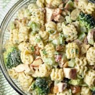 Seasoned chicken, broccoli, golden raisins, celery, and a wonderful creamy dressing come together to make this awesome Chicken Broccoli Pasta Salad. A total crowd pleaser, perfect for summer gatherings or all year long!