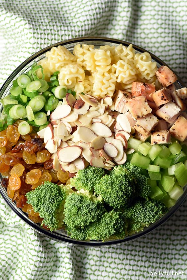 Chicken Broccoli Pasta Salad ingredients