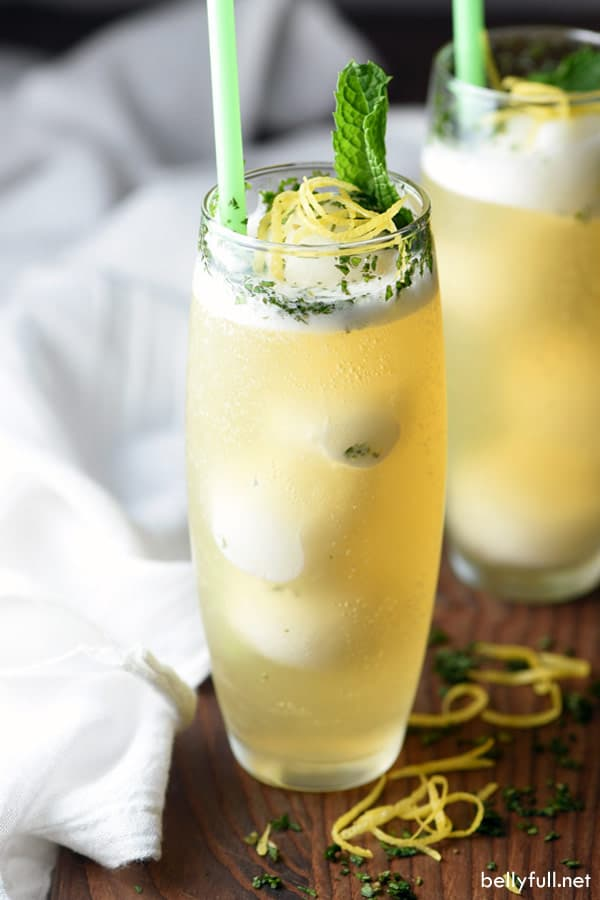 You are only a few ingredients away from the best summer drink! This Lemon Peach Fizz is sweet, simple, refreshing, and absolutely delicious. Great for parties, weddings, or after dinner!
