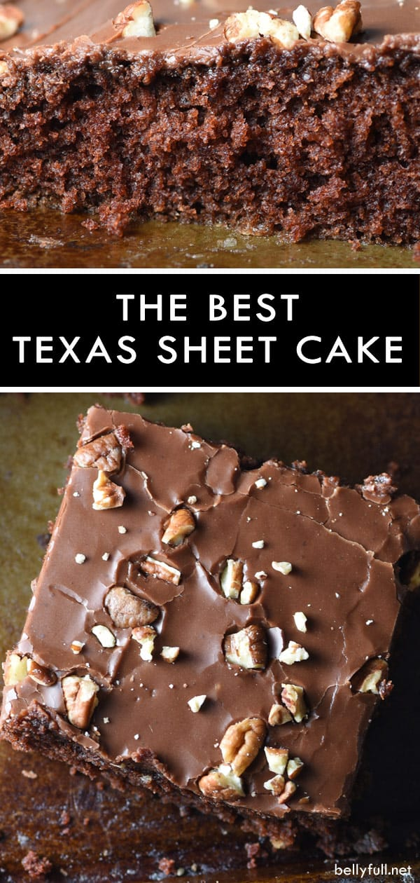 pin for Texas Sheet Cake