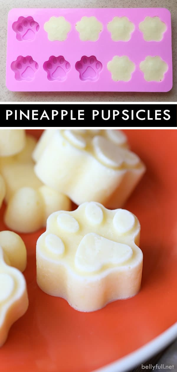 Pineapple Pupsicles frozen treat for dogs