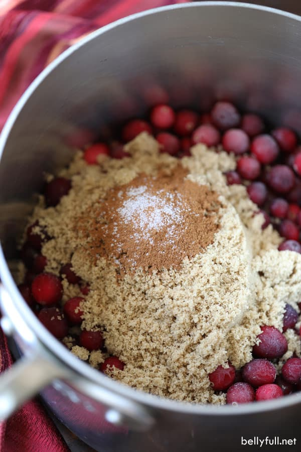 cranberries, brown sugar, and cinnamon in a pot