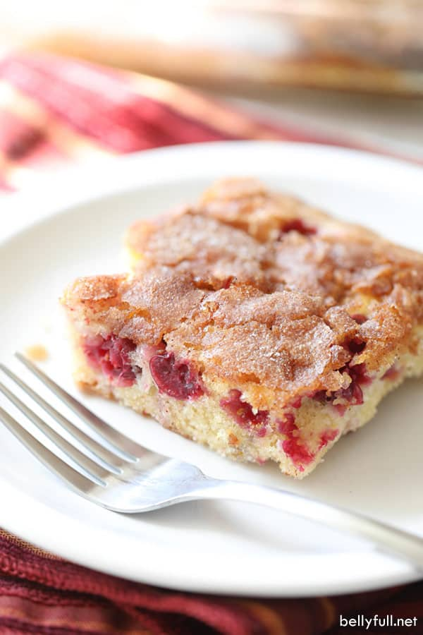 Coffee Cake slice with cranberries and cinnamon topping