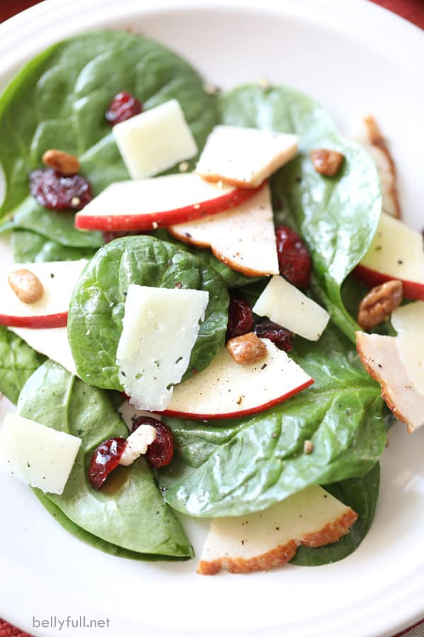 salad with shredded turkey, spinach leaves, apple slices, dried cranberries, and candied nuts