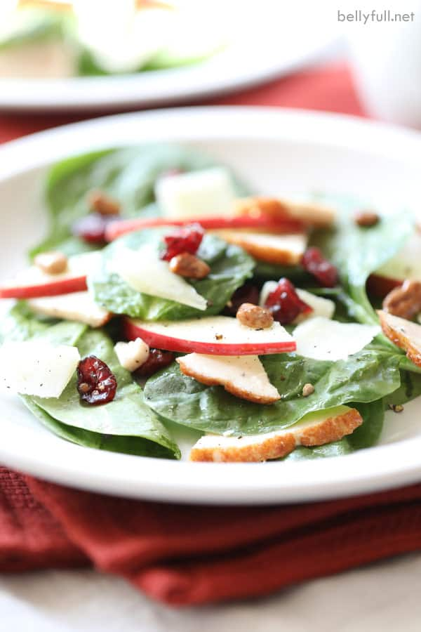 turkey salad with spinach leaves, apple slices, dried cranberries, and candied nuts