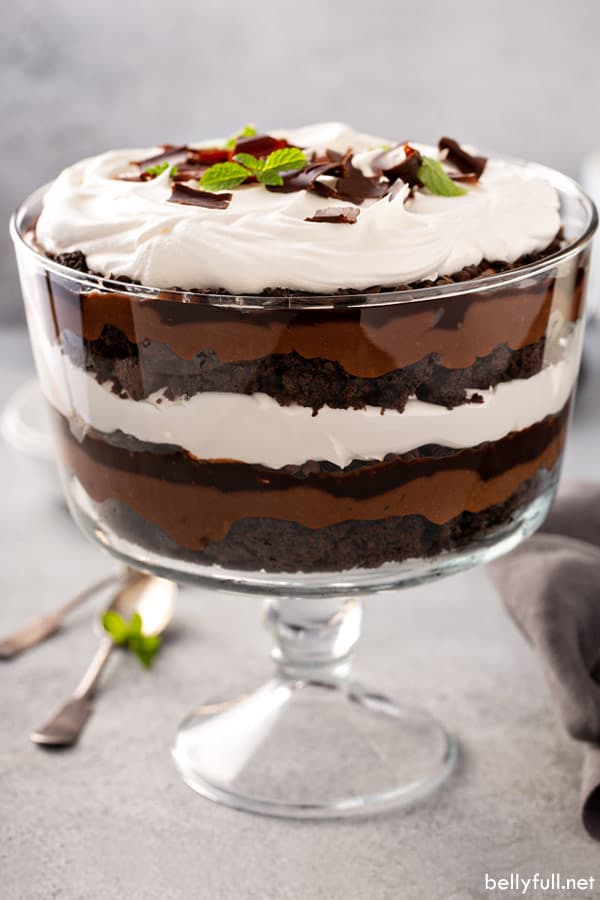 front view of chocolate trifle