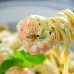 shrimp and creamy pesto pasta swirled around fork
