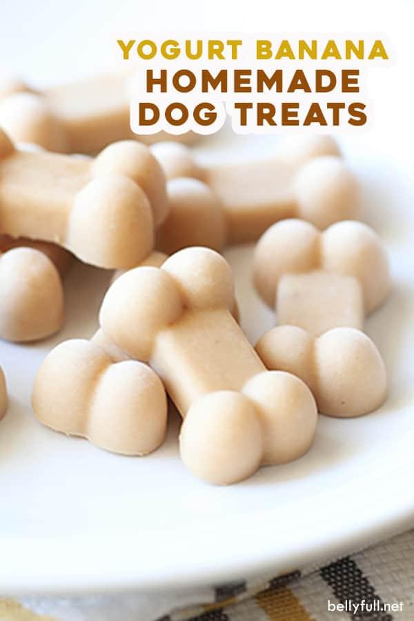 pin for homemade frozen yogurt banana dog treats