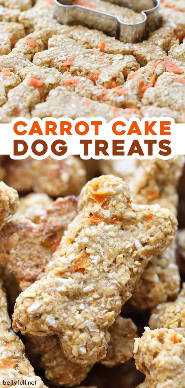 pin for homemade carrot cake dog treats