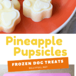 2 picture pin for pineapple pupsicles frozen dog treats