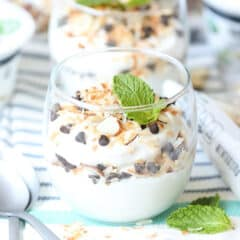 yogurt parfait with sliced almonds, toasted coconut, mini chocolate chips, and mint leaf for garish