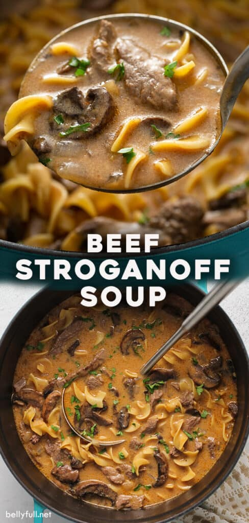 pin for beef stroganoff soup