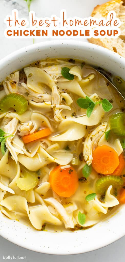 pin for chicken noodle soup recipe