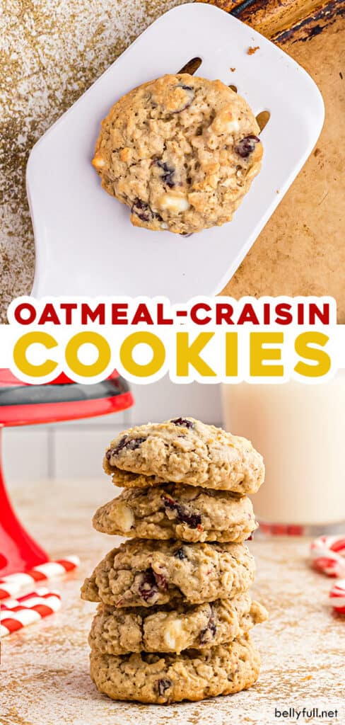2 picture pin for oatmeal craisin cookies
