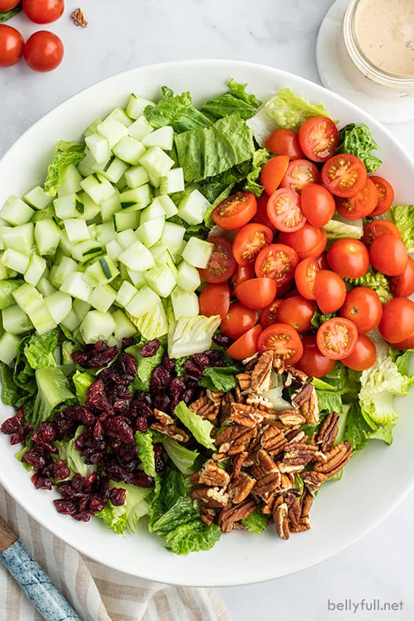 overhead photo of chopped romaine, cucumber, tomatoes, pecans, and craisins in white bowl