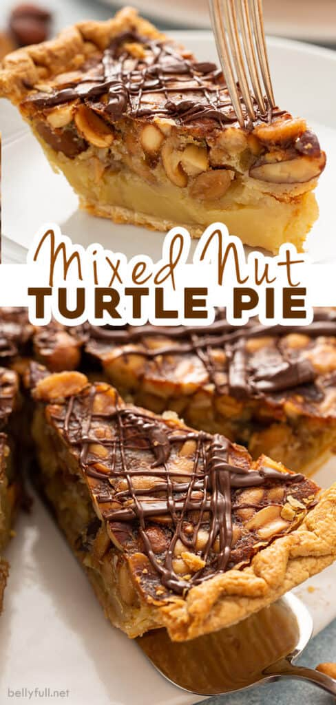 2 picture pin for turtle pie recipe
