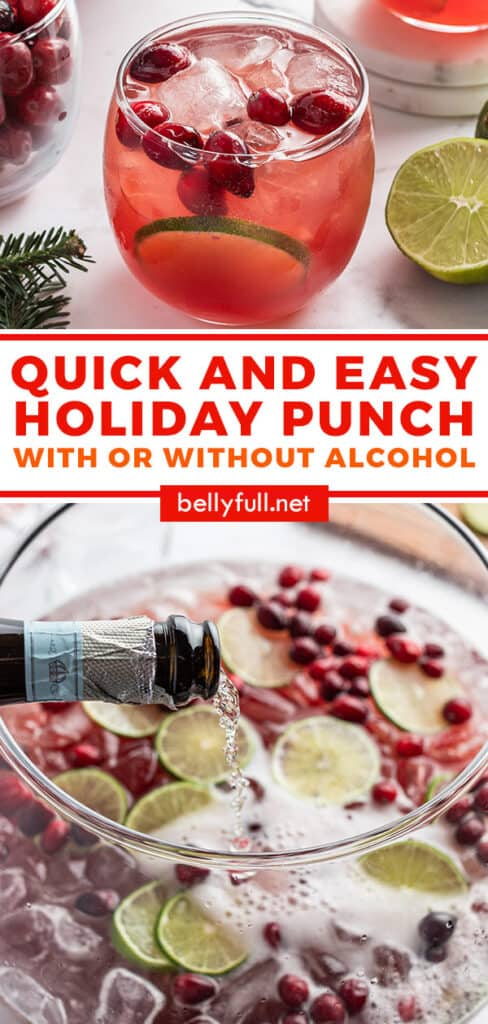 pin for Holiday Christmas punch recipe