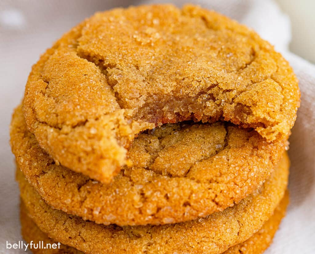 close up brown sugar cookie with bite taken