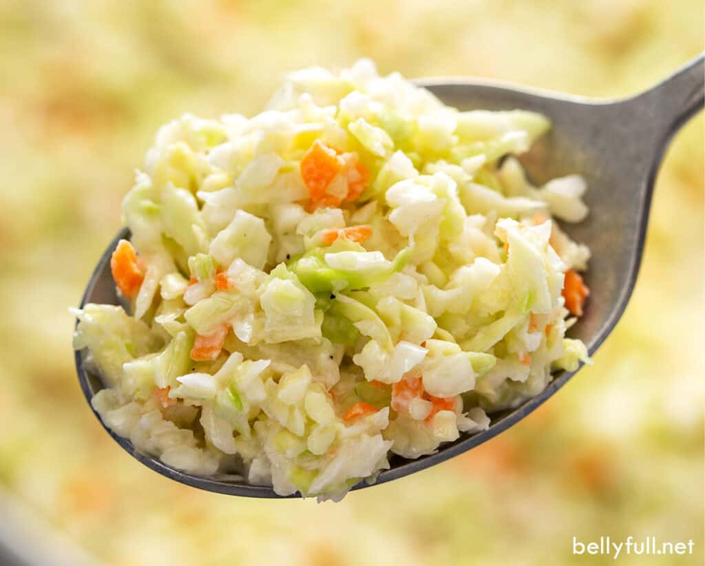 spoonful of coleslaw