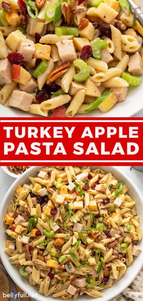 pin for turkey apple pasta salad recipe