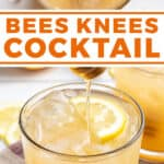 pin for bee's knees cocktail recipe