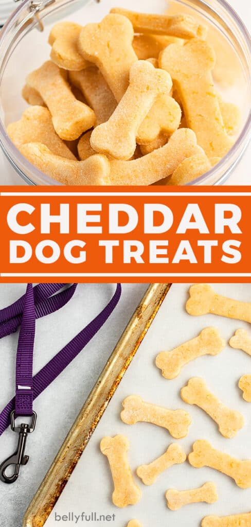 pin for cheddar dog treats recipe