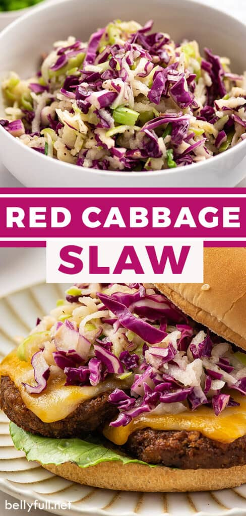 pin for red cabbage slaw recipe