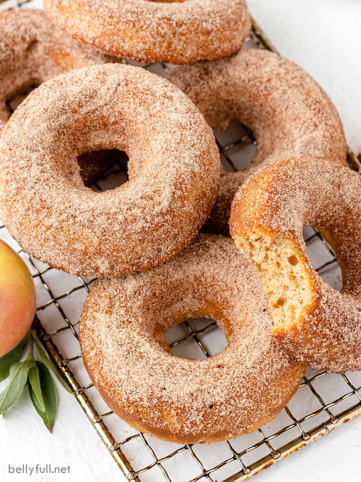 Close-up of baked apple cider donuts with one missing a bite