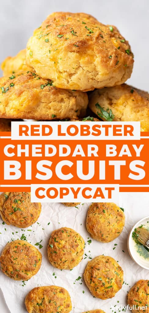 pin for cheddar bay biscuits recipe