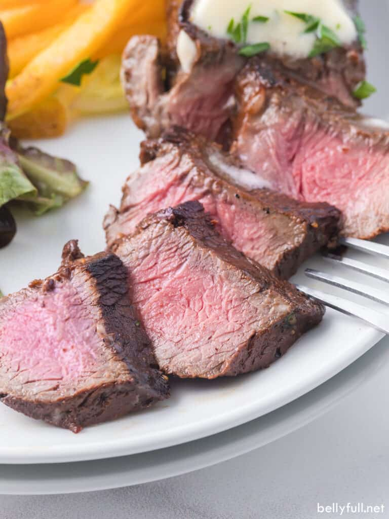 Slices of steak in easy steak marinade on a plate with French fries