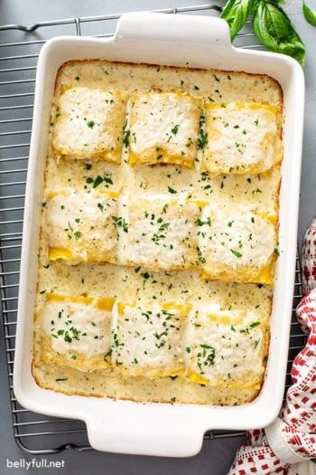 9 chicken alfredo lasagna rolls in baking dish
