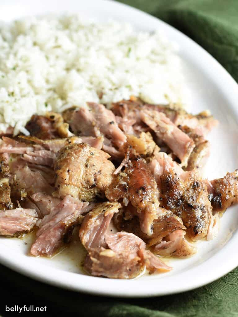browned and crispy slow cooker shredded pork on white plate with rice